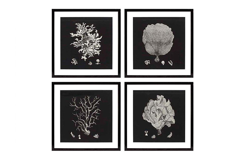 The best of: Black and White Artwork | Black & Tan Corals by Eichholtz | Monochrome Art | LuxDeco.com Style Guide
