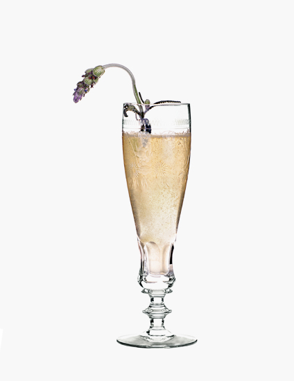 Provence Champagne Cocktail Recipes – Summer Cocktail Recipes – LuxDeco.com Style Guide – Shop Luxury Glassware at LuxDeco.com