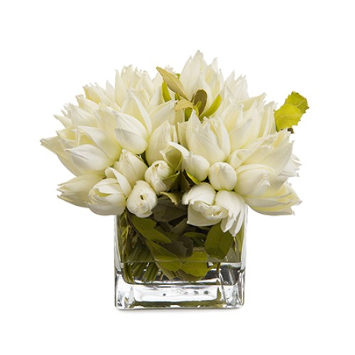 Snowdrop Tulips Arrangement