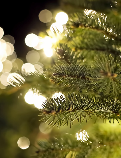 How To Decorate A Christmas Tree | How To Choose Your Christmas Trees | Read more in the LuxDeco Style Guide